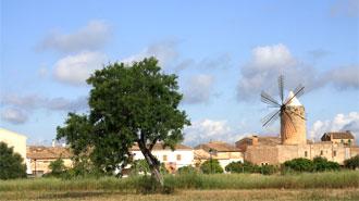 Die Inselmitte Mallorcas